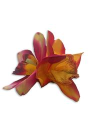 Double Combo Orchid Orange-Raspberry Flower Hair Clip